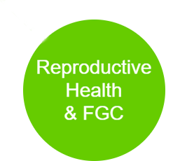 Reproductive health and FGC